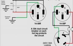 7 Pin Rv Trailer Connector Wiring Diagram – Wiring Diagrams – 7 Pin Rv Trailer Connector Wiring Diagram