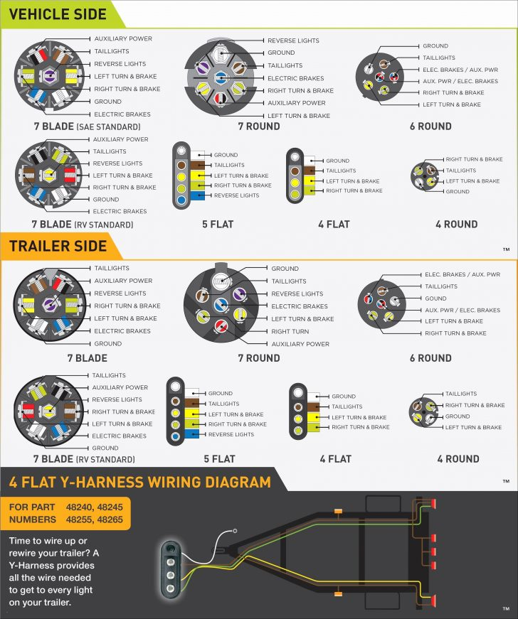King Trailer Wiring Diagram