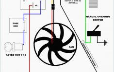 Trailer Wiring Diagram Breakaway Switch