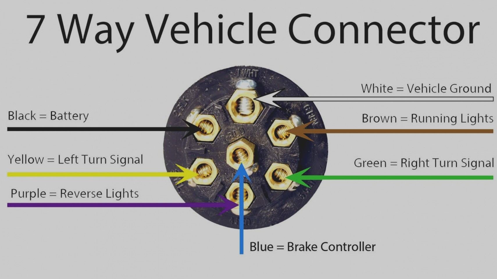 Groovy Curt Wiring Diagram Wiring Library 7 Point Trailer Hitch Wiring Wiring 101 Photwellnesstrialsorg