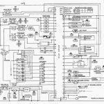Ecu Schematics | Wiring Diagram   Neo Trailer Wiring Diagram