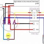 Featherlite Horse Trailer Wiring Harness   Free Wiring Diagram For You •   Featherlite Horse Trailer Wiring Diagram