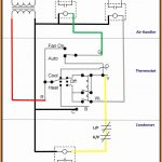 Oasis Wiring Diagram   The Types Of Wiring Diagram •   Oasis Trailer Wiring Diagram