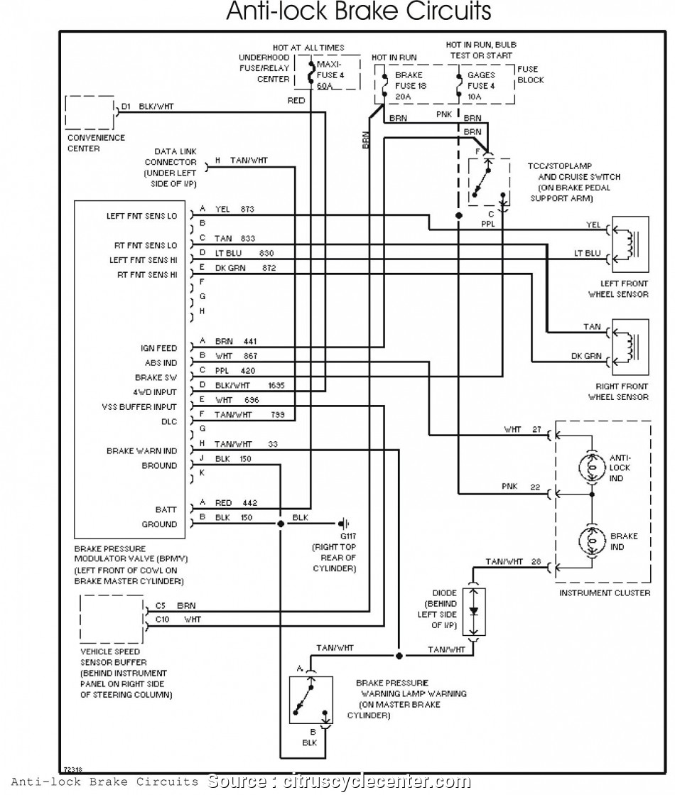 Snowbear Trailer Wiring Diagram | Wiring Diagram - Reese Trailer Wiring Diagram